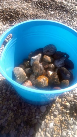 beach rocks collected
