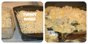 TurkeyDivine