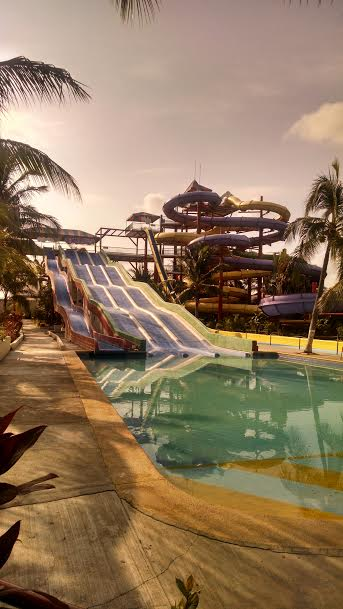 dolphin discovery water park