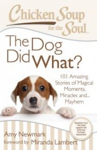 Chicken Soup for the Soul The Dog did What? Giveaway US/CAN