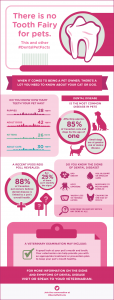 Get to know the #DentalPetFacts to help keep your pet healthy