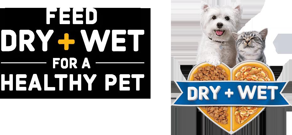 dry-wet-food