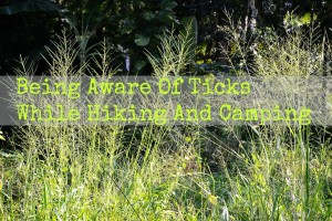 Be Tick Aware