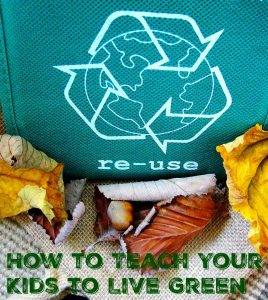 How to Teach Your Kids to Live Green