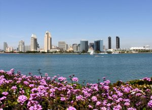 Fun Things to Do in San Diego for Families with Different aged Children