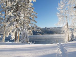 What to do in the Winter in British Columbia